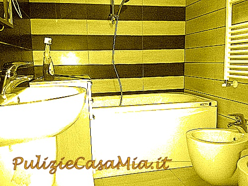 Immagine 1 48 pulizie approfondite for Pulizia bagno