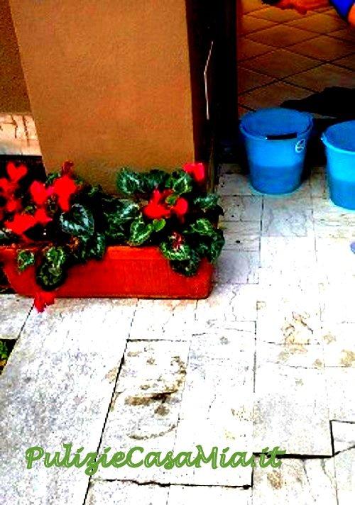 Impresa di pulizie tivoli pulizie casa e appartamenti for Tariffe pulizie domestiche